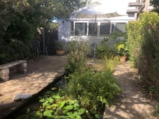 Pond courtyard