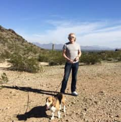 Our first-ever sit in Arizona, although we had no references the wonderful Vicki trusted us to come & look after her dear Beagle boys in 2014. It was the perfect Christmas & one day we hope to go back.