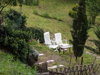 Another quiet spot in the garden