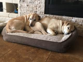 Second nap time