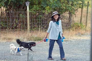 MOLLY and TOBY taking me for a walk (Port Alberni, BC)