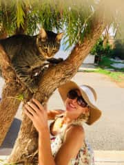 Helping the strays in Cyprus