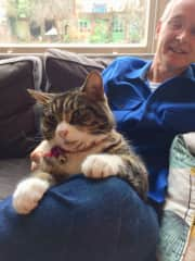 Wim with one of the Brighton cats