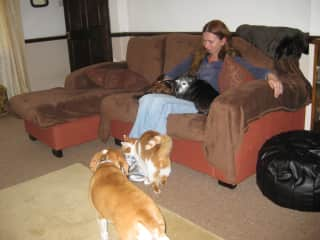 Julia with UK family pets
