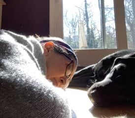 Me learning how to nap in the sun in winter from Rider