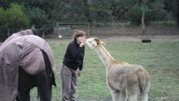 Sharon on the farm