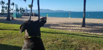 Luna and I keep active we run, swim and play together everyday!