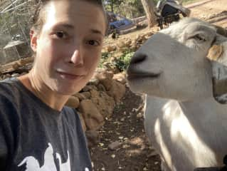 Our adventures have lead us to goat encounters as well! This is our former neighbor Ben, a VERY social and outgoing goat