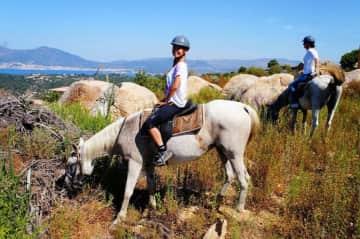 Tina + Me pet sitting horses in Corsica 2017