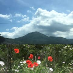 Monte Amiata , seen from the Val Dorcia