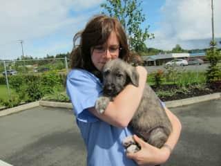 Appreciating a new puppy patient at work