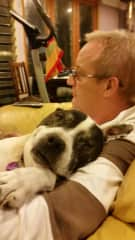 Peter with our staffy Cooper [died in 2017, aged 16]