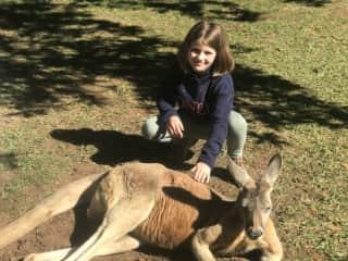 Australia Zoo, July 2020