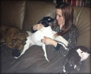 Puppy-pile with Louie, Woody and pet-sittee, Osito!