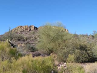 Desert scape, a view of the Superstition Foothills