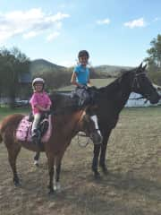 Our fine steeds and riders