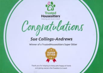 Our Super-Housesitter certificate!