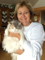 Lori with Guill - daughter's cat who comes to stay often