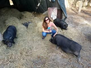 Lisa regularly volunteers at animal sanctuaries in Florida, NY, and Hawaii !