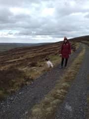 Exploring the Yorkshire Moors