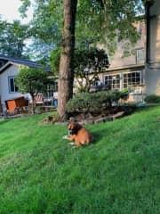 Backyard hangout