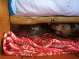 Liana and Puma playing hide and seek ;)