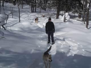 Everyone enjoys a snow shoe outing!