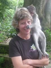 Denise playing with monkeys in Bali.