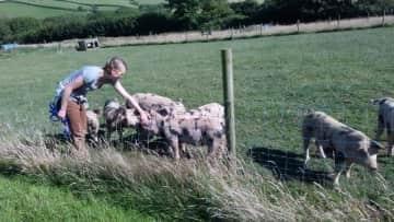 weekend on a beautiful farm in Cornwall (2015)