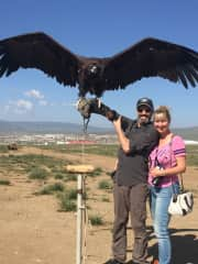 A 20 kilo vulture in Mongolia