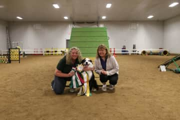 Amy with Boomerang earning Agility Trial Champion of Canada designation.