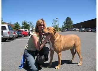My personal dog Leroy (back in 2007 pit ridgeback lab mix)
