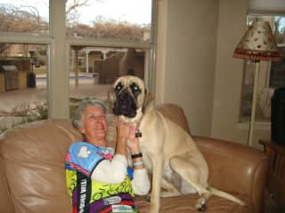 Linda with cuddly friend at house sit in Albuquerque New Mexico