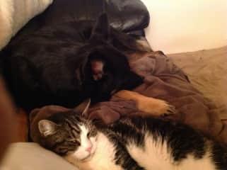 Sadie and Izzy