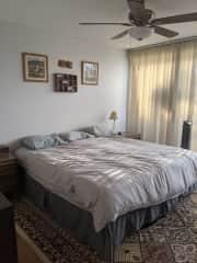 Master bedroom where sitters will sleep.