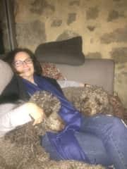 Enjoying some poodle cuddles South France