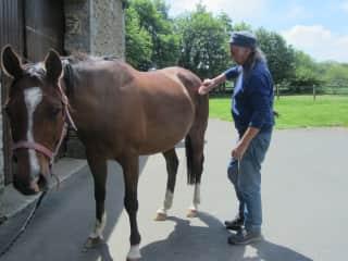 Richard petting Tacos, the horse