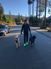 Greg, Kona and Guinness/ Housesit Anmore BC