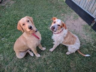 Kiki & Dougie
