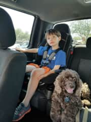 Road trip with Snicker our cocker spaniel.  Pets are very much a part of all our activities.
