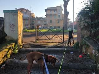 In interesting part of Rome called Garbatella