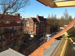 View from my street window