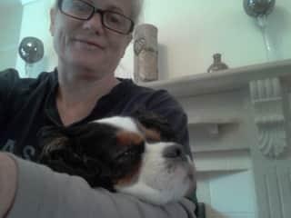 Beautiful Esme keeping me company while I work in Wath Upon Dearne England