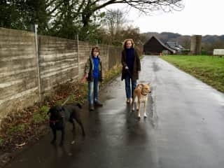 Walking the two rescued dogs from Uganda