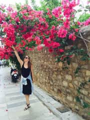 Never not obsessed with flowers, like this bougainvillea in Greece
