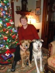 Our big fur babies - no longer with us but we love them still.