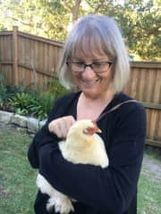 Linlee and Ginger the chook