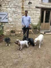 David with our 4 French babies, ready for a walk