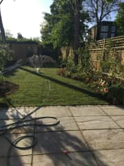 our garden with yoyo playing with water spray!