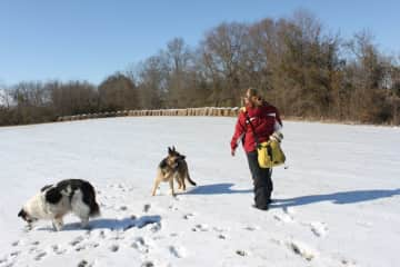 Our daughter and two of our pets playing in the snow on our property.